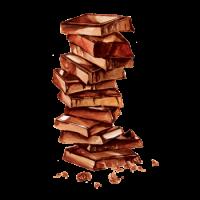 250106 Сироп PROFF Шоколад, 1 л.